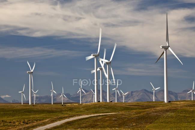 Moinhos de vento geradores de energia perto de Fort MacLeod, Alberta, Canadá . — Fotografia de Stock
