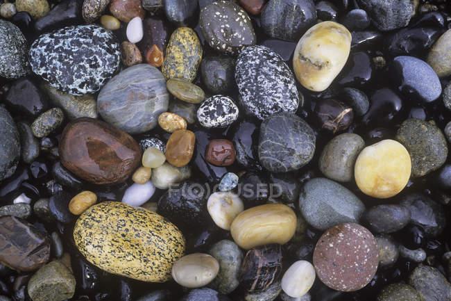 Pequeno e grande mar rochas costeiras, quadro completo — Fotografia de Stock