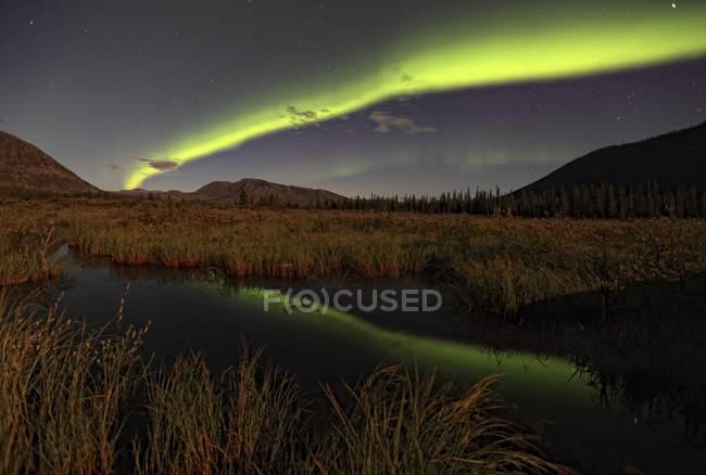 Aurora borealis in sky over marsh in Yukon, Canada. — Stock Photo