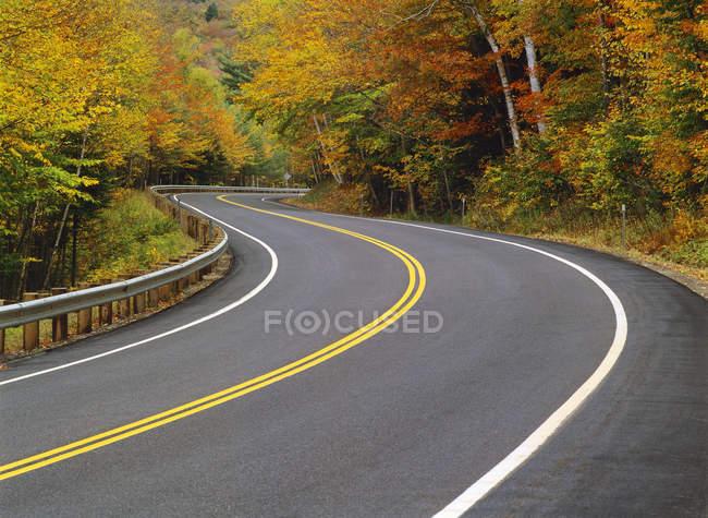 Estrada passando pela floresta na folhagem outonal, New Hampshire, EUA — Fotografia de Stock