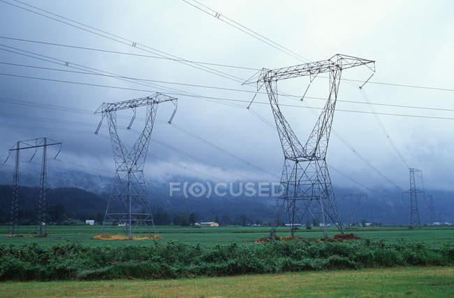 Tours hydroélectriques dans les terres agricoles, vallée du Fraser, Colombie-Britannique, Canada . — Photo de stock