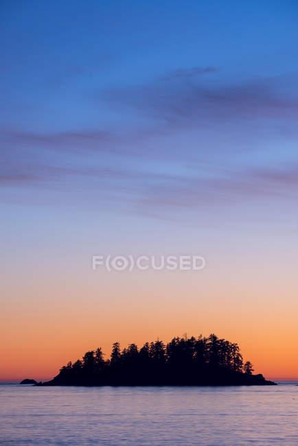 Остров с силуэтами деревьев в Тофино, Британская Колумбия, Канада — стоковое фото