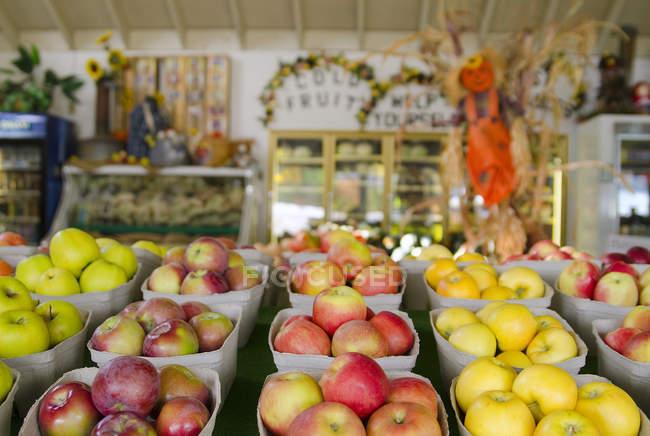 Свіжих продуктів в фрукти стенд у Summerland, у Томпсон Оканаган провінції Британська Колумбія, Канада — стокове фото