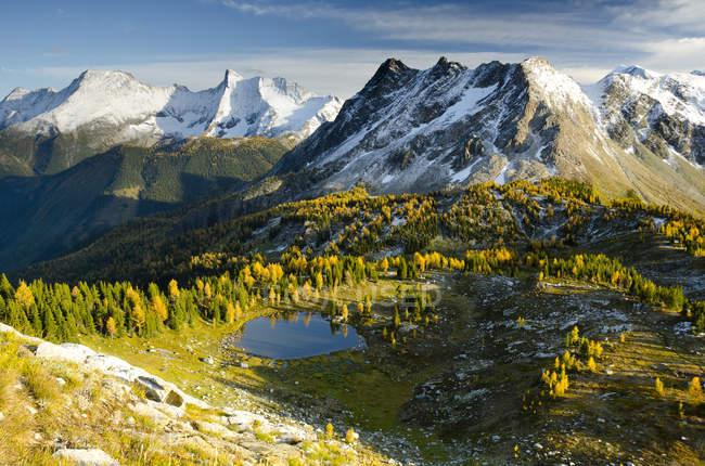 Jumbo Pass et mélèzes alpins dans le feuillage automnal, Purcell Mountains, Colombie-Britannique, Canada — Photo de stock