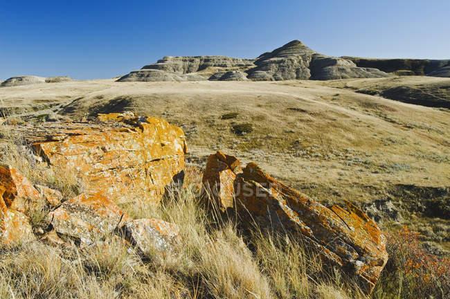 Солнца освещенные скалистый пейзаж, лугопастбищные угодья национального парка — стоковое фото