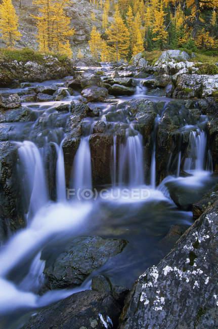Cascata di Ohara del lago all'altopiano di Opabin, Parco nazionale di Yoho, Colombia britannica, Canada. — Foto stock