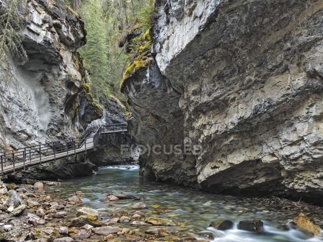 Пешеходный мост через скалистую реку в каньоне Джонстон, Национальный парк Банф, Альберта, Канада — стоковое фото