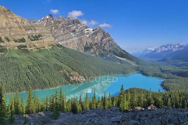 Veduta aerea della foresta di conifere e delle montagne dal lago Peyto, Banff National Park, Alberta, Canada — Foto stock