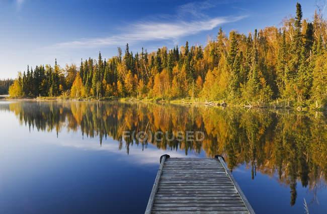Humeur automnale de la forêt près du lac Dickens, Nord de la Saskatchewan, Canada — Photo de stock