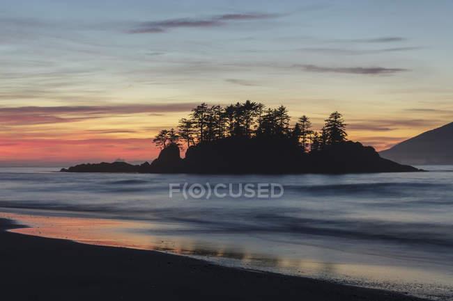 Sílhuetas de árvores de Flores Island Provincial Park ao anoitecer em Clayoquot Sound, Colúmbia Britânica, Canadá . — Fotografia de Stock