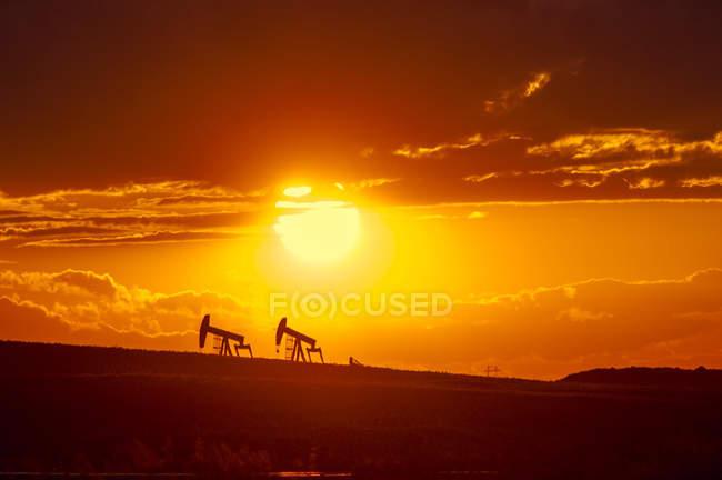 Buses de pompage au coucher du soleil près de Warner, Alberta, Canada . — Photo de stock