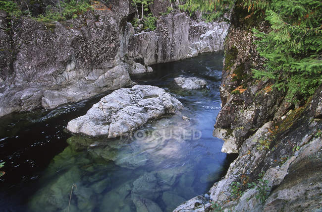 Rocky shores of Kennedy River, Pacific Rim National Park, Vancouver Island, British Columbia, Canadá . - foto de stock