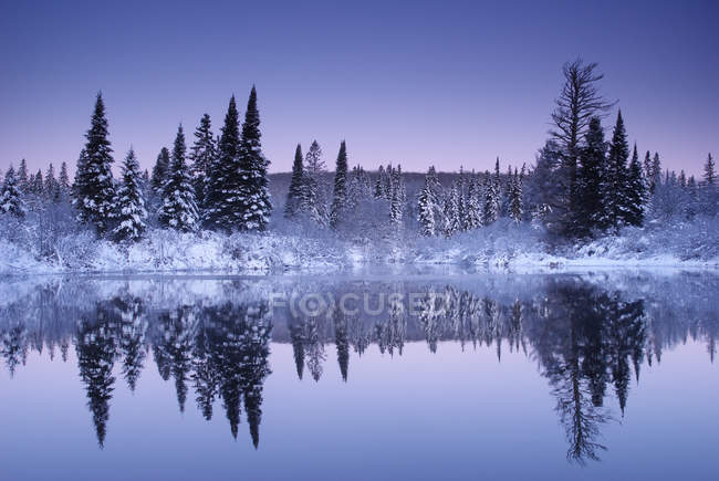 Winter showfall on Oxtonge river in Algonquin park, Ontario, Canada — Stock Photo