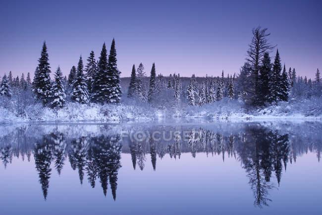 Зимовий showfall на Oxtonge річці в Algonquin парку, Онтаріо, Канада — стокове фото