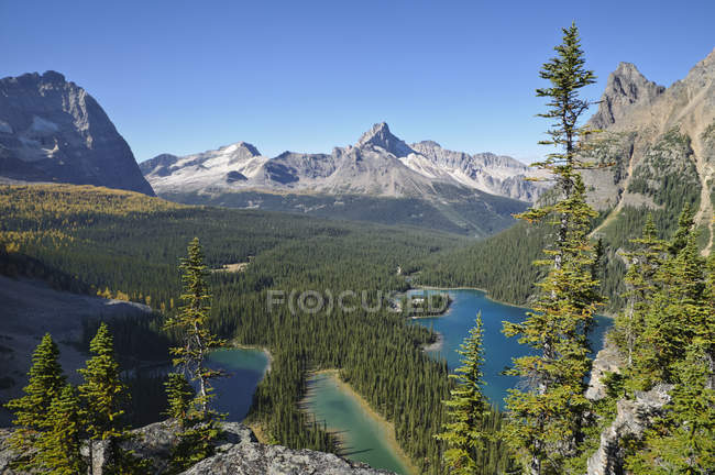 Aerial view of Lake Ohara and Mary Lake in Yoho National Park, British Columbia, Canada — Stock Photo
