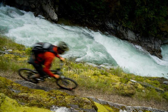 Горный велосипедист с трудом едет по тропе над рекой в горах Пёрселл, Британская Колумбия, Канада — стоковое фото