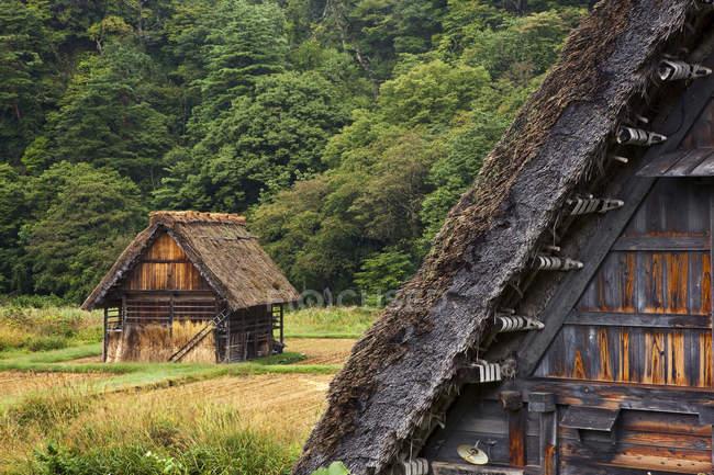 Историческая деревня Сиракава с фермерскими домами Минка на севере Японии . — стоковое фото