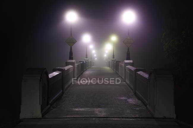 Assiniboine Park footbridge crossing Assiniboine River on foggy morning, Winnipeg, Manitoba, Canadá . — Fotografia de Stock