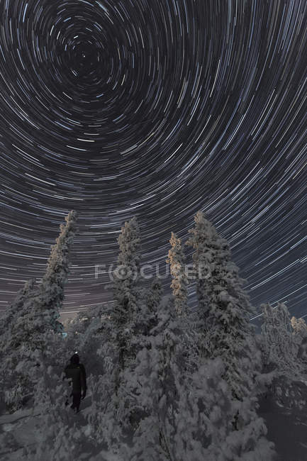 Person standing in trees under stars trails across night sky, Old Crow, Yukon. — Stock Photo