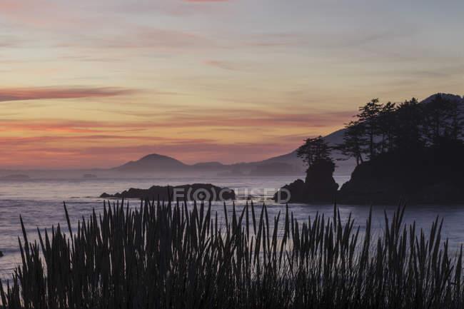 Ilha do Flores Island Provincial Park ao entardecer Clayoquot som, Colúmbia Britânica, Canadá. — Fotografia de Stock