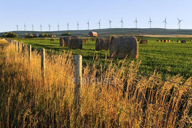 Heuballen und Bauernhof mit Cowley Ridge Windkraftanlagen im Hintergrund, Cowley, Alberta, Kanada — Stockfoto