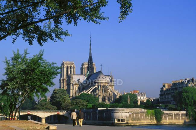 Собор Нотр-Дам на набережной реки Сены в Париже, Франция — стоковое фото
