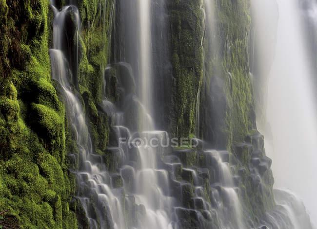Vista dettagliata dell'acqua che scorre della cascata Proxy Falls in Oregon, USA — Foto stock