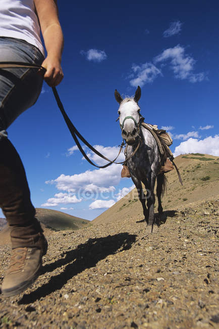 Person leading horse in South Chilcotin Mountains, Gold Bridge, British Columbia, Canada. — Stock Photo