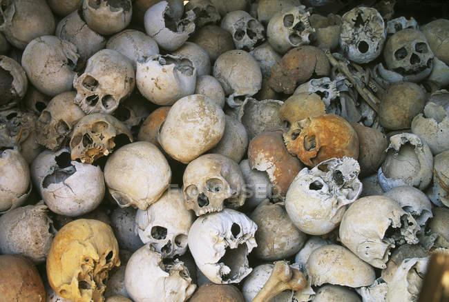 Crânes humains comme témoignage macabre de Pol Pot et Kymer rouge, Siem Reap, Cambodge — Photo de stock
