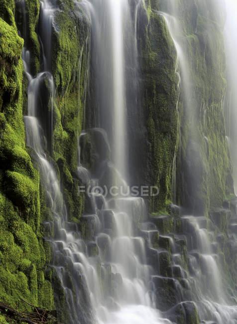 Vista detallada del agua que fluye de las cascadas Proxy Falls en Oregon, EE.UU. - foto de stock