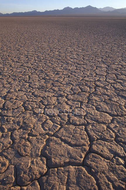 Cracked earth on dry lake bed in Mohave Desert, California, USA — Stock Photo