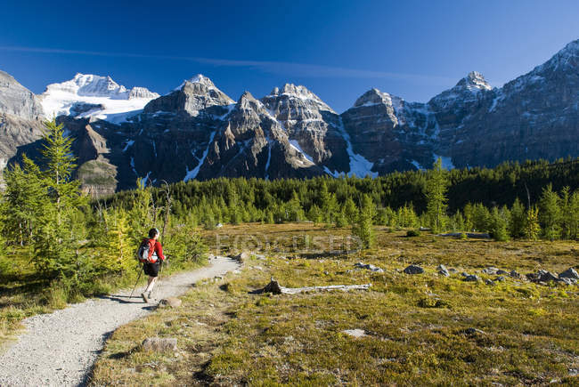 Mid adult female hiker walking in Larch Valley near Moraine Lake in Banff National Park, Alberta, Canada. — Stock Photo