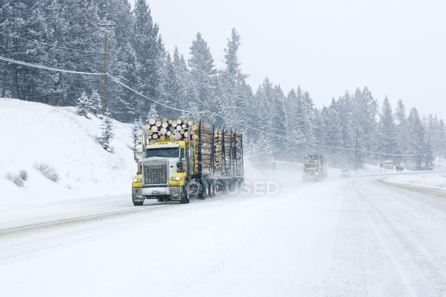 Logging trucks driving in winter storm on highway in British Columbia, Canada. — Stock Photo