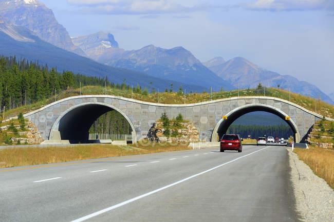 Ponte faunistico che attraversa la Trans-Canada Highway, Banff National Park, Alberta, Canada — Foto stock