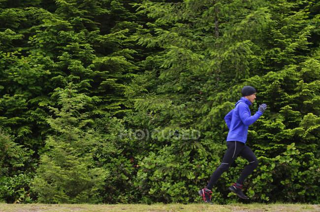 Hombre adulto medio correr en sendero alrededor del lago Sasamat, Belcarra Regional Park, Port Moody, British Columbia, Canadá - foto de stock