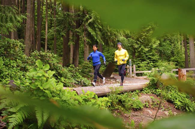 Пара бегает по тропе вокруг озера Сасамат, Региональный парк Белкарра, Порт Муди, Британская Колумбия, Канада — стоковое фото