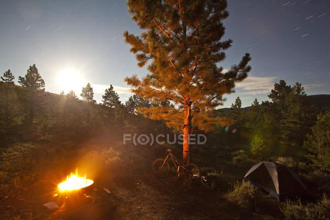 Гірський велосипед в кемпінгу на монарх Crest Trail, Salida, Колорадо, США — стокове фото