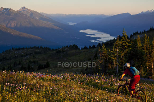 Male mountain biker riding alpine Frisby Ridge trail in Revelstoke, British Columbia, Canada — Stock Photo