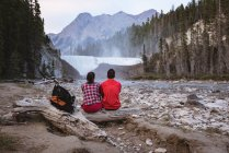 Rear view of couple sitting on log near waterfall — Stock Photo