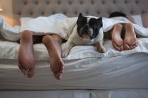 Deitado na cama com seu cão de estimação no quarto em casa de casal — Fotografia de Stock