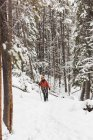 Female rock climber walking in snowy forest during winter — Stock Photo