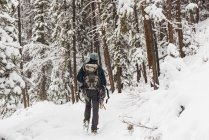 Male rock climber walking in snowy forest during winter — Stock Photo