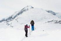 Вид сзади пары, прогулки по снегу capped горы в зимнее время — стоковое фото