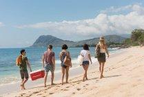 Masculino amigos carregando esky na praia em um dia ensolarado — Fotografia de Stock