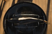 Close-up of fish on a barbeque in the backyard — Stock Photo