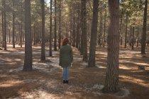 Задній вид на жінку, що стояли в лісовій стежці — стокове фото