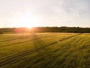 Vista del campo al atardecer, provincia de munster - foto de stock