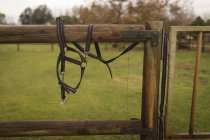 Close-up of horse harness on wooden ranch — Stock Photo