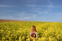 Rear view of woman standing in the mustard field on a sunny day — Stock Photo
