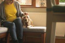 Chien caressant femme enceinte dans le salon à la maison — Photo de stock